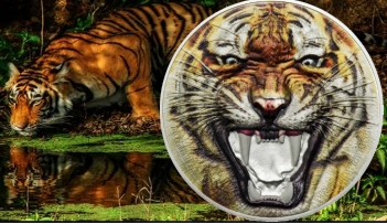 The BENGAL TIGER Rare Wildlife 2 oz