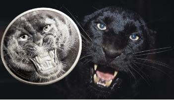 The Black Panther - Rare Wildlife 2 oz