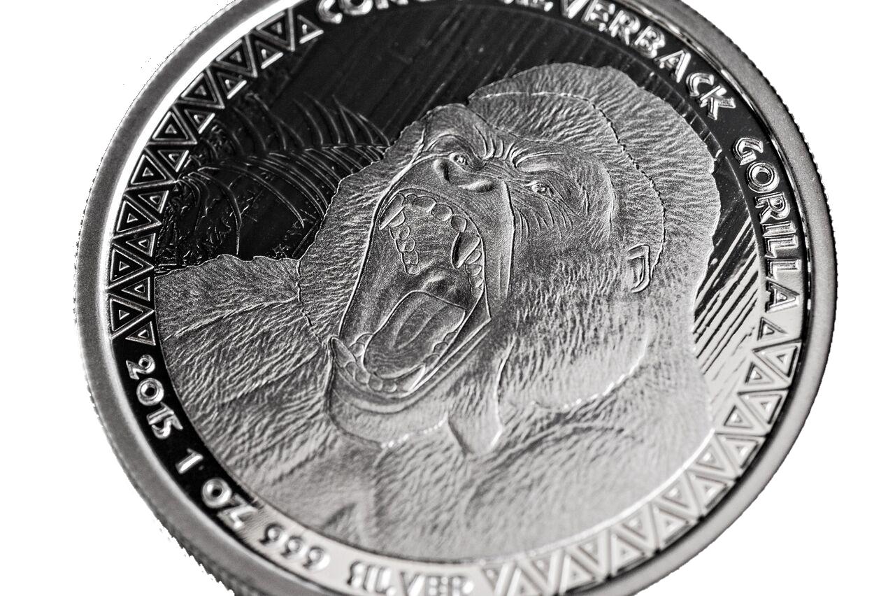 gorilla-side.jpg